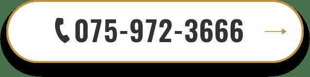 075-972-3666
